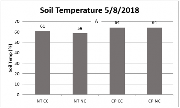Struggling with Soil Temperature During Planting? Cover Crops Can Help