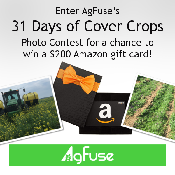 AgFuse's 31 Days of Cover Crops Photo Contest is Starting!