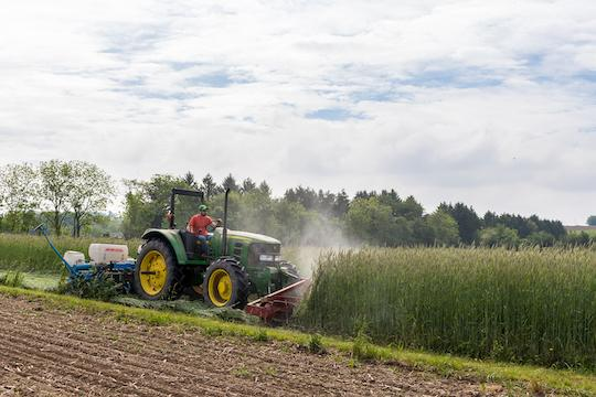 When is it Too Late to Seed Cover Crops?