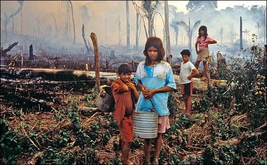 How Brazilian Big Agriculture is Destroying the Brazilian Amazon