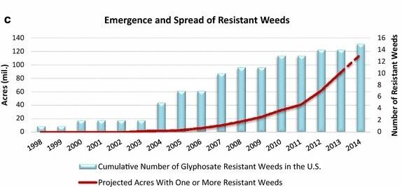 20 Years Later: What Roundup Ready Crops Taught Us About Weed Management