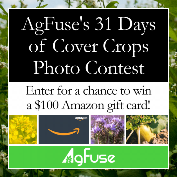 AgFuse's 31 Days of Cover Crops Photo Contest is Back!
