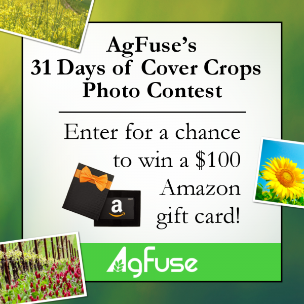 Here Comes AgFuse's 31 Days of Cover Crops Photo Contest!
